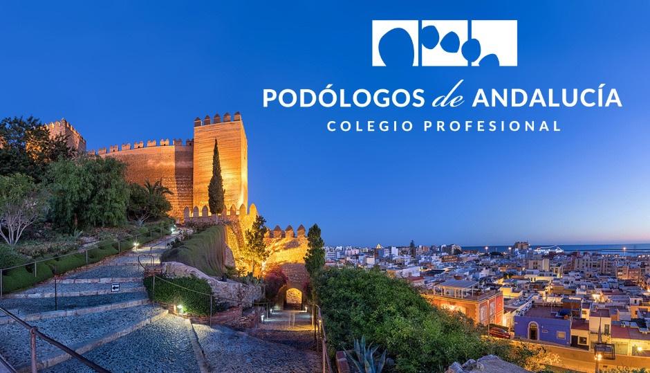 Asamblea General Ordinaria 23 de Noviembre del 2019 en Almería