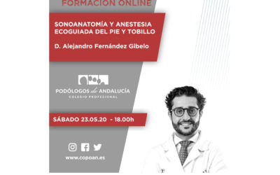 Formación On line – Sonoanatomía y Anestesia Ecoguiada del Pie y Tobillo