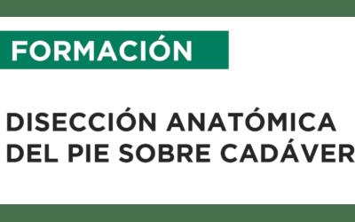 CURSO DE DISECCIÓN ANATÓMICA DEL PIE – Sevilla